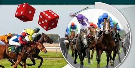 Horse gambling tips mr motos gamble